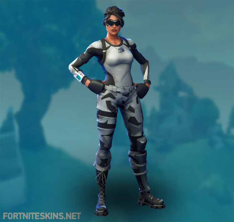 arctic assassin outfit