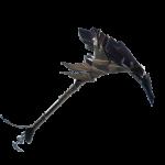 Dark Shard icon png