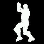 Flamenco icon png